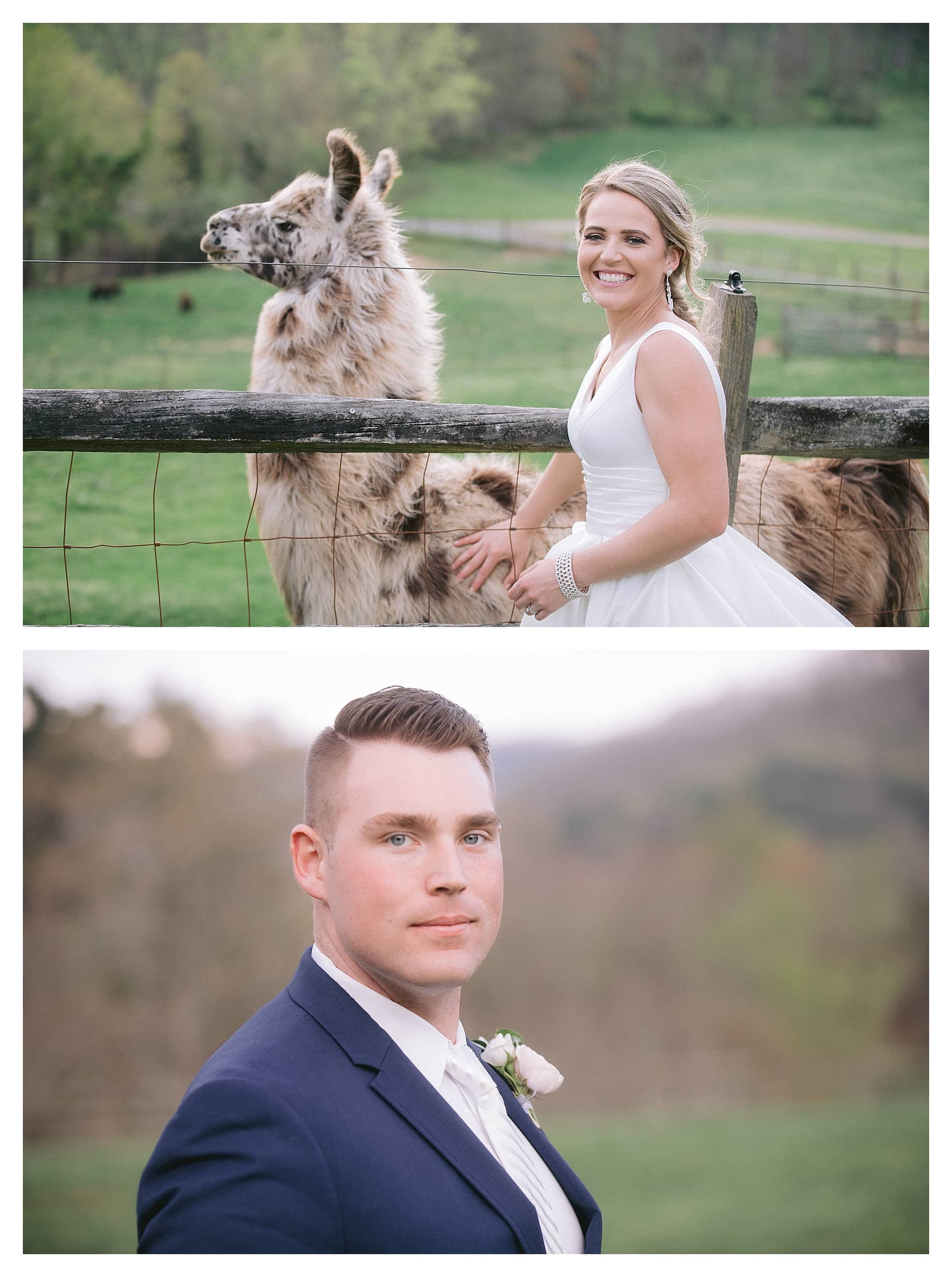 Bride and groom close up photos in grassy field