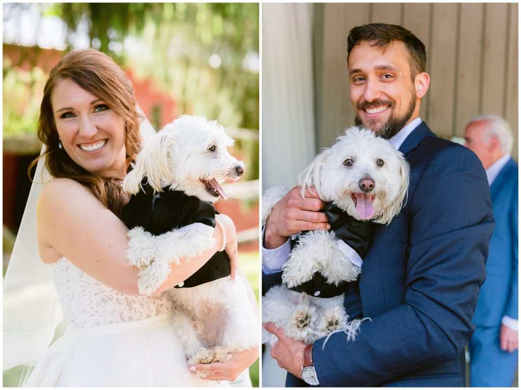 Bride and groom with their dog in a tuxedo on their wedding day.